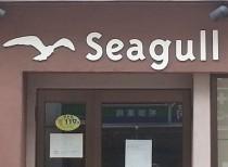 seagul20160727